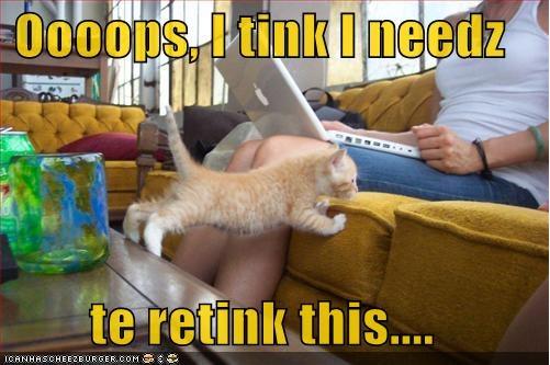 Oops-Cat