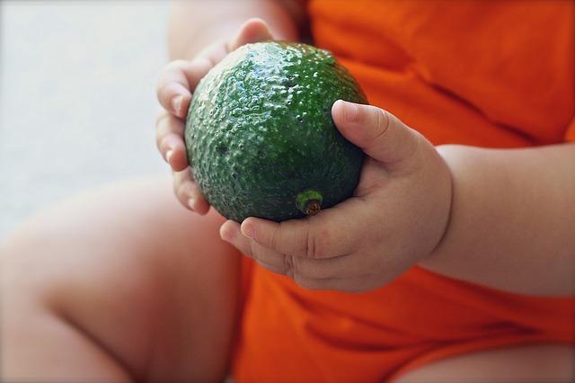 avocado-1476494 640