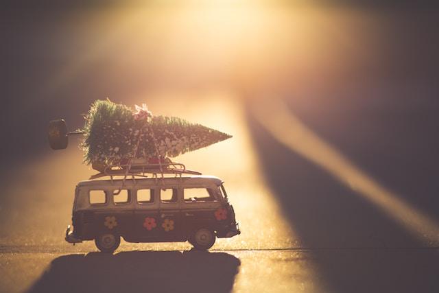 christmas-tree-426641