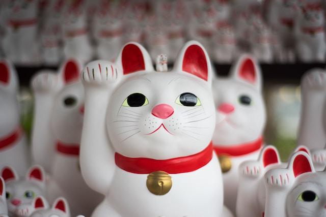 lucky-cat